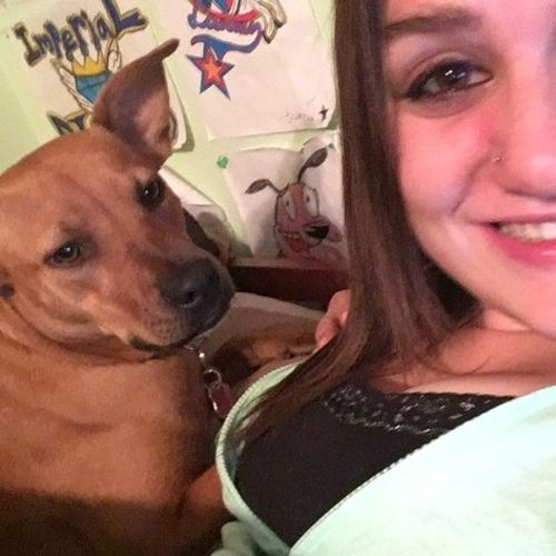 Pet Care Provider Laura Sadler's Profile Picture