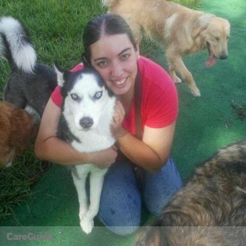 Pet Care Provider Tiffany M's Profile Picture