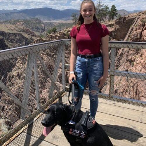 Pet Care Provider Hannah Z's Profile Picture