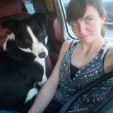 Dog Walker, Pet Sitter in Forestburg