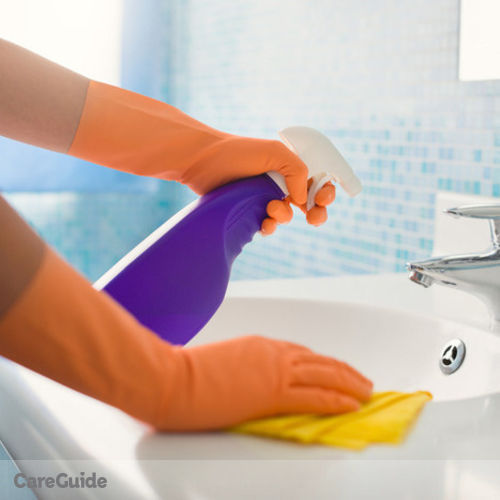 Housekeeper Provider Easy Clean Peterborough's Profile Picture
