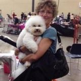 Talented Pet Sitter for Your Home