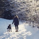 Kamloops Dog Walker Seeking Job Opportunities in British Columbia