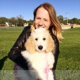 Dog Walker, Pet Sitter in Fargo