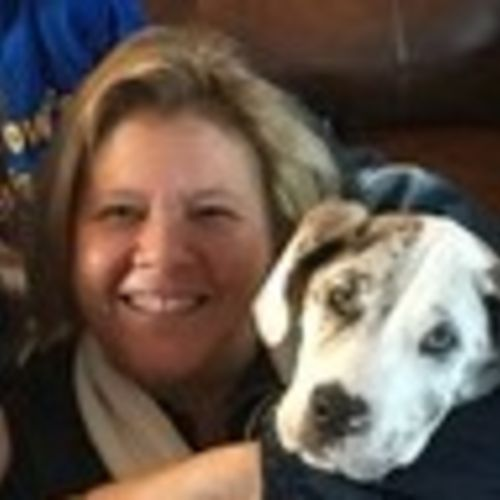 House Sitter Provider Julie W's Profile Picture