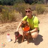 Dog Runner/walker!