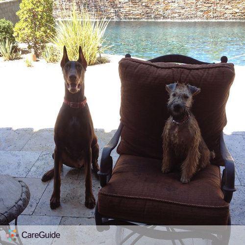 Pet Care Provider Dani H's Profile Picture