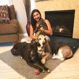 Petsitter, dog walker and above all, an animal lover :)
