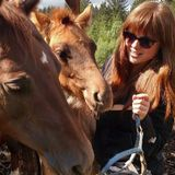 Horse, Dog, Car House sitter with lots of expirience ready to take care of your furry family