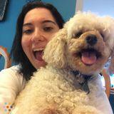 Dog Walker, Pet Sitter in Olney