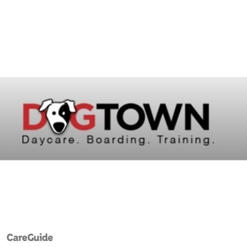 Pet Care Provider Dog Town's Profile Picture