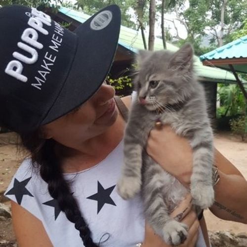 Pet Care Provider Jessa S Gallery Image 1