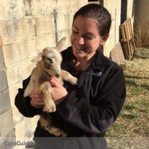 Pet Care Provider Dawn H's Profile Picture