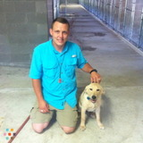 Pet Care Provider in Katy