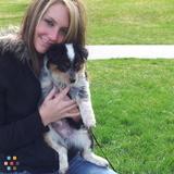 Dog Walker, Pet Sitter in Draper