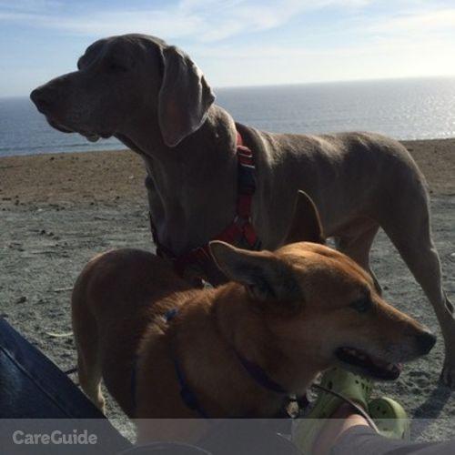 Pet Care Job Cindy Brockman's Profile Picture