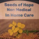 Seeds Of Hope Non Medical In Home Health Care LLC Provider