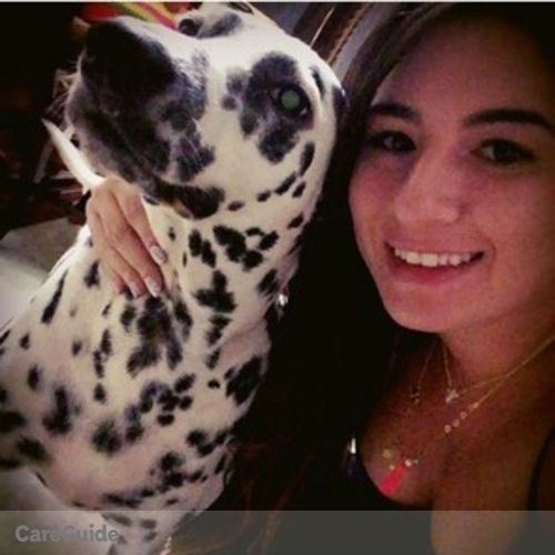 Pet Care Provider Catalina Gomez's Profile Picture