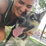 Dog Walker, Pet Sitter in Stockton