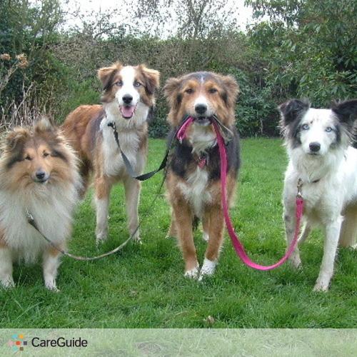 Pet Care Provider John Jack's Profile Picture