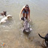 Dog Walker, Pet Sitter in Kansas City