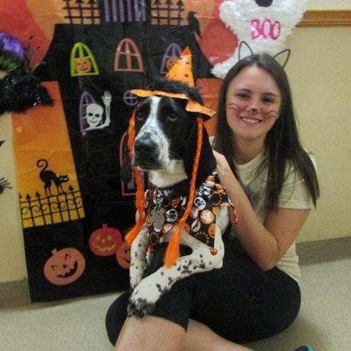 Pet Care Provider Amanda Hunt Gallery Image 2