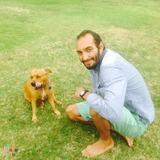 Dog Walker, Pet Sitter in Kailua