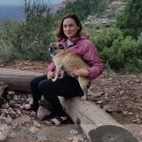 Dog Walker, Pet Sitter in East Flagstaff