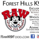 Dog Walker in Forest Hills