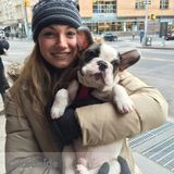 Pet Sitter in New York City