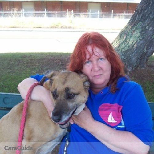 Pet Care Provider Kelly Heisler's Profile Picture