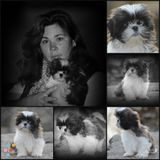 """Baxters Photography / customized around """"you"""""""