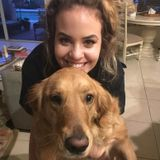 Looking to offer animal care!