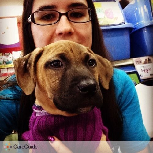 Pet Care Provider Megan Hennessey's Profile Picture