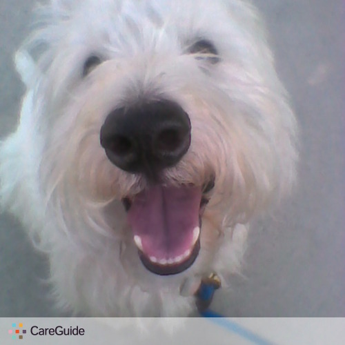 Pet Care Provider Janet F's Profile Picture