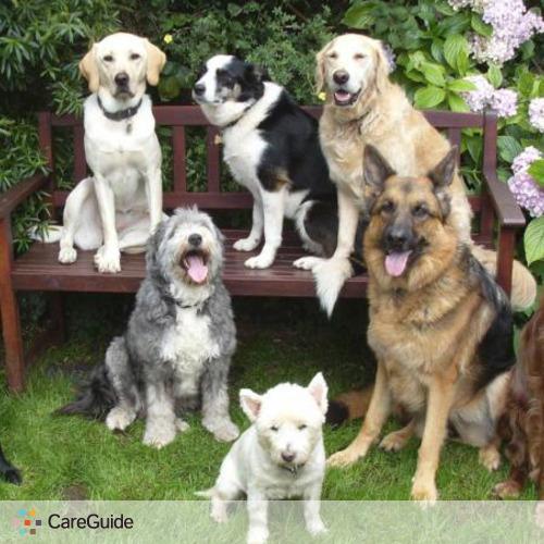 Pet Care Provider Clay G's Profile Picture