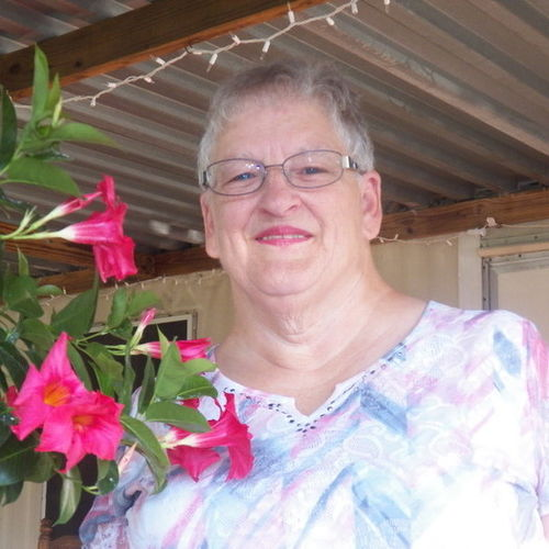 House Sitter Provider Deborah C's Profile Picture