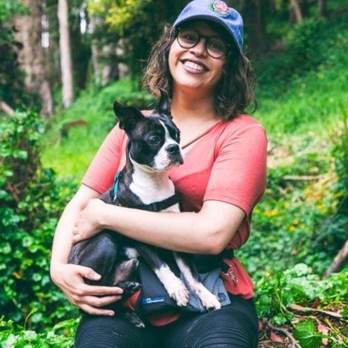Pet Care Provider Priscilla Carrillo's Profile Picture