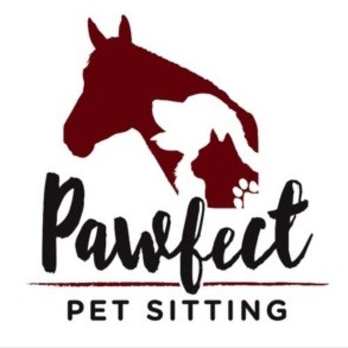 Pet Care Provider Christine C's Profile Picture