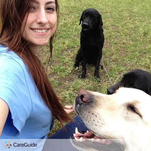 Pet Care Provider Katie Strickland's Profile Picture