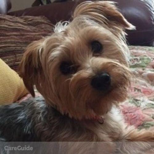 Pet Care Job Christine Dickson's Profile Picture