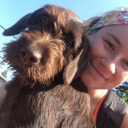 Pet Care Provider Robyn P's Profile Picture