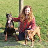Dog Walker, Pet Sitter in Lititz