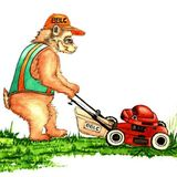 Brothers Bears Lawn Care