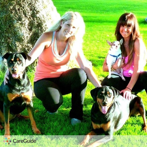 Pet Care Provider Emily Wolfe's Profile Picture
