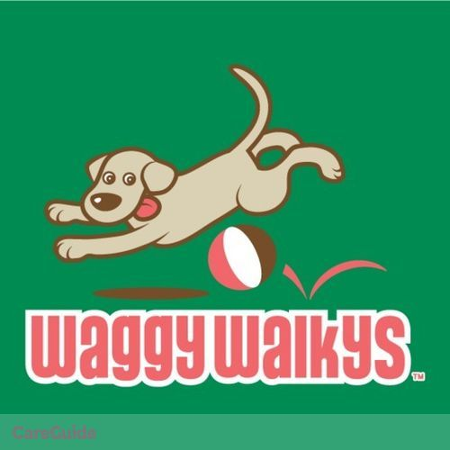 Pet Care Provider Waggy Walkys's Profile Picture