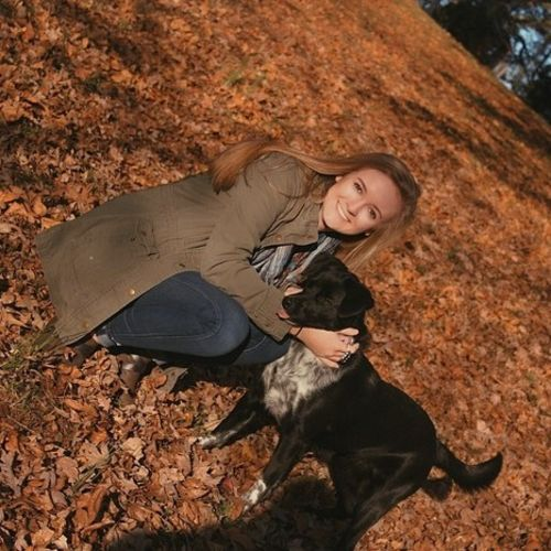 Pet Care Provider Laikyn H's Profile Picture