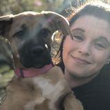 Ozark Dog lover! Intrested in work!