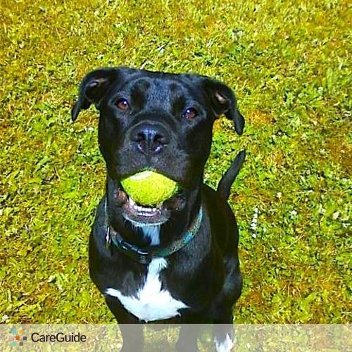 Pet Care Provider Nicole Bradshaw's Profile Picture