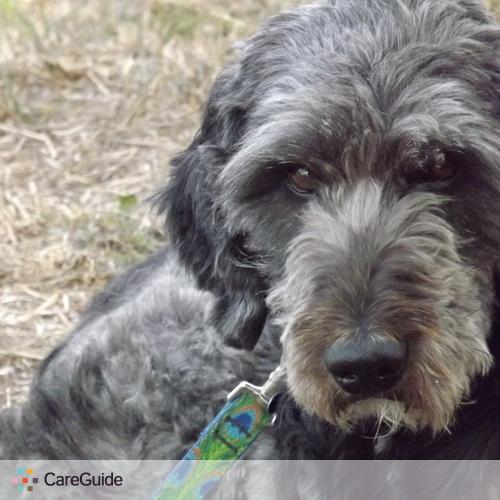 Pet Care Provider Melissa Bradley's Profile Picture